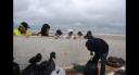 Nettoyage de plage2